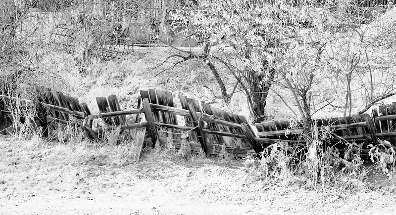 Fence, Campbell, California, 2010