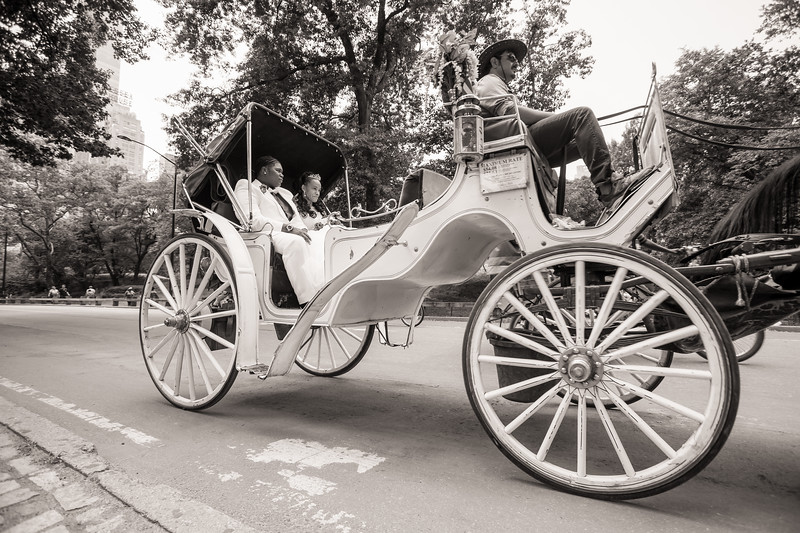 Central Park Wedding - Ronica & Hannah-29.jpg