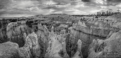 Bryce Canyon   Black & White Photography by Wayne Heim