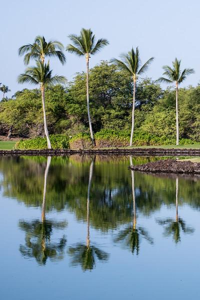 34_Hawaii__MG_0113 copy.jpg
