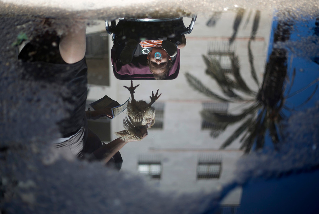 . Reflected in water, an ultra-Orthodox Jewish woman swings a chicken over her child\'s head, as part of the Kaparot ritual, in which it is believed that one transfers one\'s sins from the past year into the chicken, in the Ultra-Orthodox city of Bnei Brak near Tel Aviv, Israel,Wednesday, Sept. 11, 2013.  (AP Photo/Ariel Schalit)