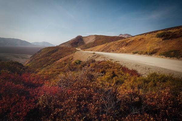 Best of Fall in Denali