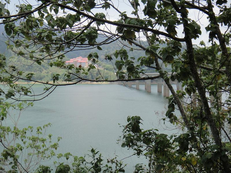 Belum Rainforest (4).JPG