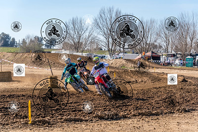 Race 13 450 Nov