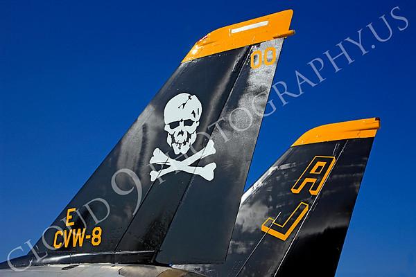 Grumman F-14 Tomcat Tail Pictures