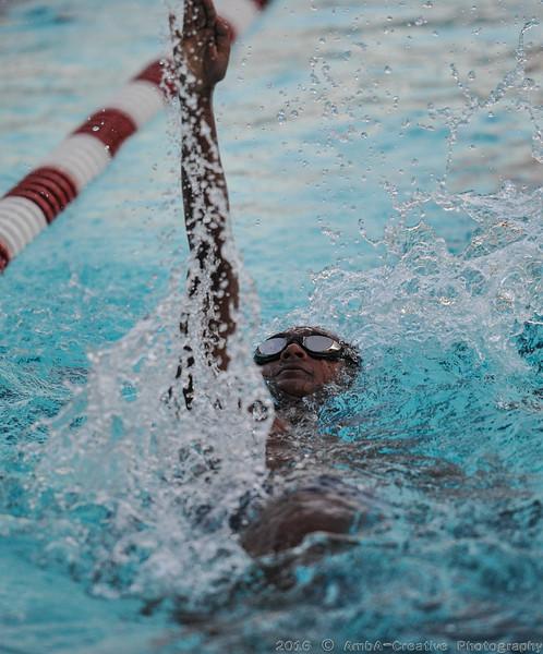 2016-06-29_HAC_SwimMeet_v_Dolphins@SkylineDE_090.jpg