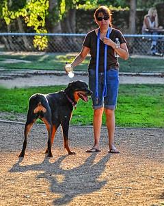 Dog Park Aug '08