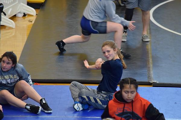 Girls State Wrestling Tournament