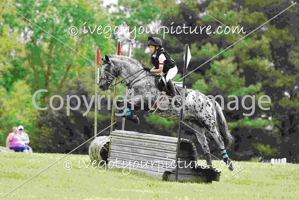 2015 Equestrian Events