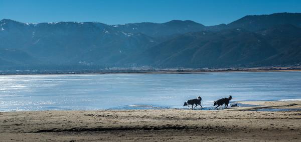 A Walk at the Lake. Jan.14