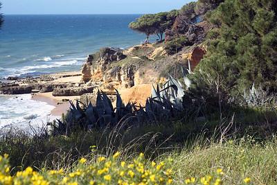 Friday 7 March 2014 : Olhos d'Agua, Armacao de Pera, Senhora de Rocha, and Porches, Algarve