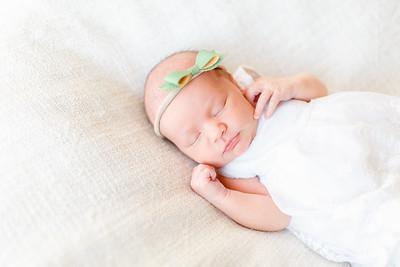 November 2017 | Newborn Rory
