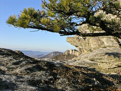 north fork mountain, march 2006