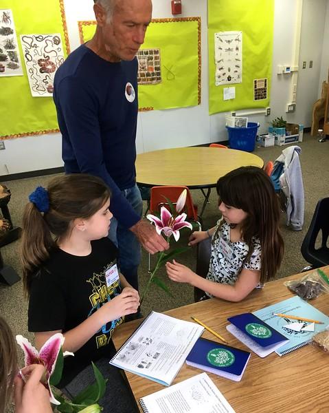 LATO OA SM Botany 20-01-31 - 6.jpg