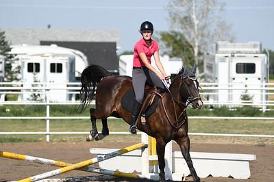 Equestrian Jumping & Dressage