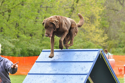 UKC Fun Run April 22, 2012