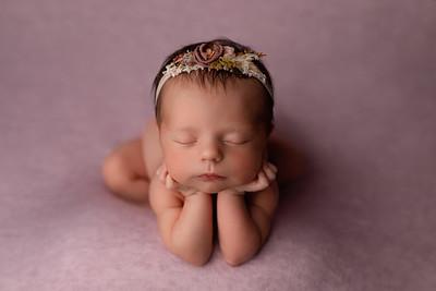Anastasia • Newborn