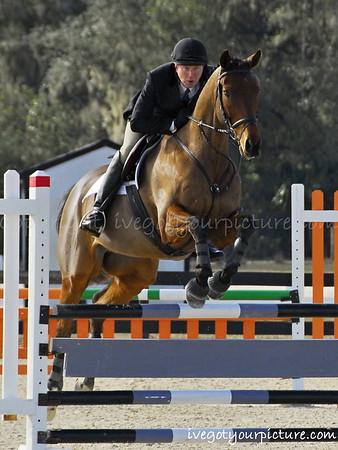 Rocking Horse I Jan 2014