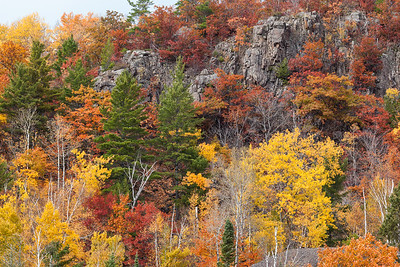Cliffs with Autumn Trees
