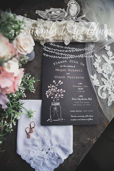 Central FL wedding photographer-0016.jpg