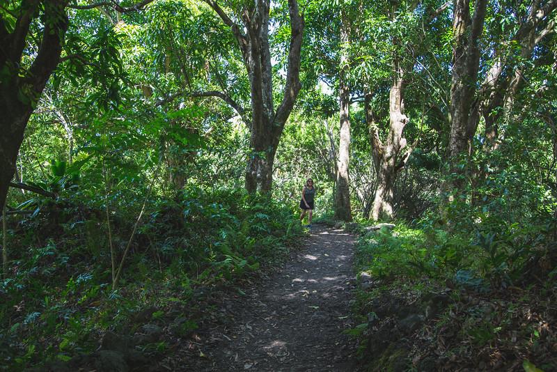 Maui 5D-61.jpg