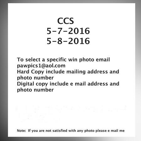 CCS     May7,8, 2016