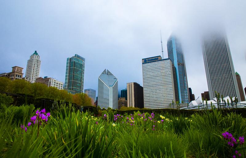 Chicago Nature-5692.jpg