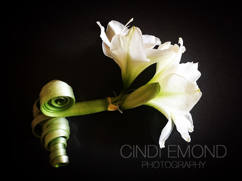 "42 ""Flower with Curled Stem"" IMG_7679.JPG"