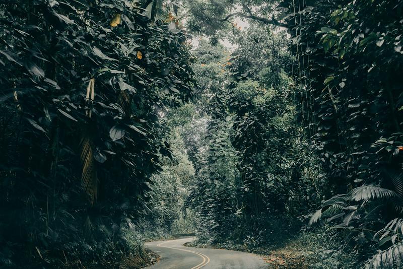 Hawaii20-378.jpg