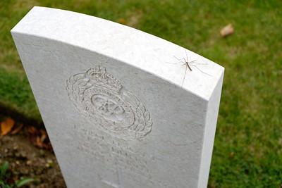 Cimetière militaire britannique de Bayeux