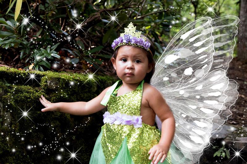 795A1926 fairy.jpg