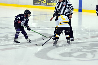 Livonia Kings - Squirt