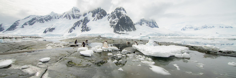 2019_01_Antarktis_04523.jpg