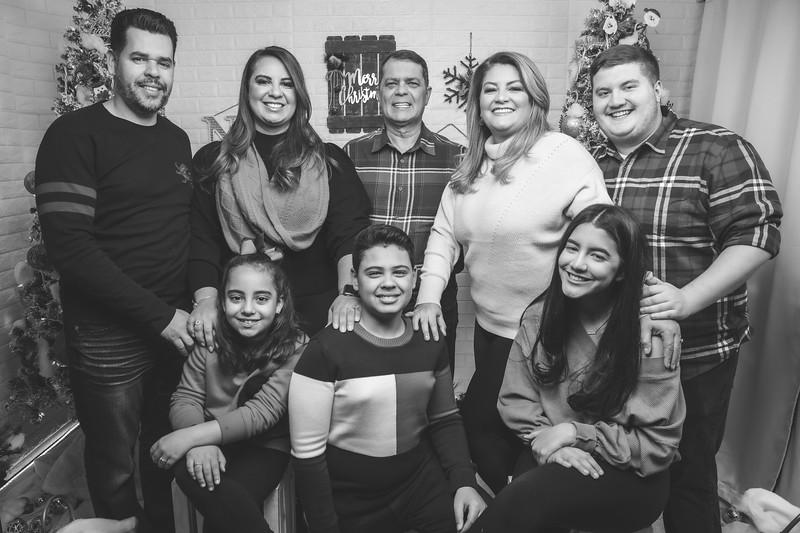 12.18.19 - Vanessa's Christmas Photo Session 2019 - 64.jpg