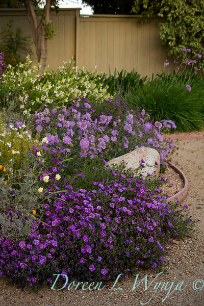 Linda Keyes Garden_081.jpg