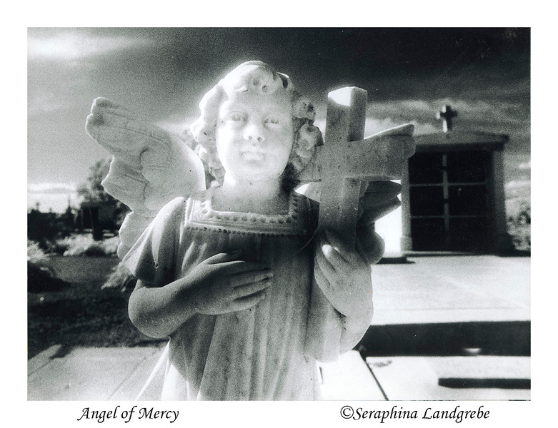 Angel of Mercy Scan.jpg