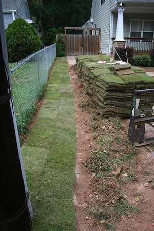 20100827 New Grass