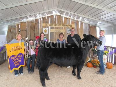 8-28-15 NEWS Livestock sale