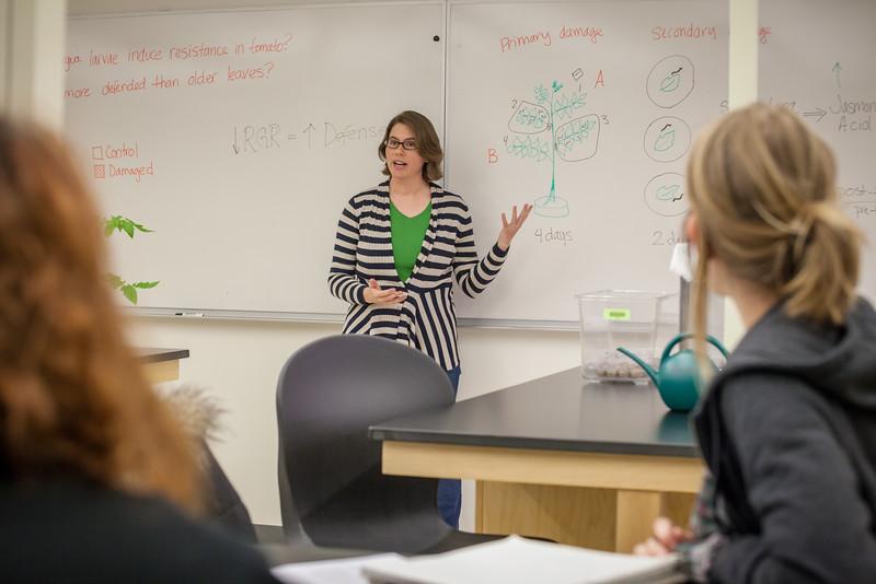 Alyssa Hakes Classroom-22.jpg