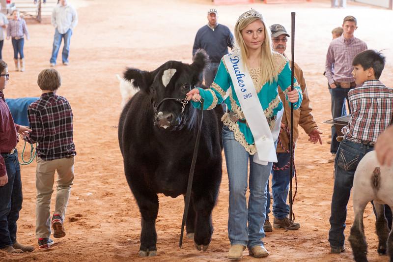 Hays County Show-9817.jpg