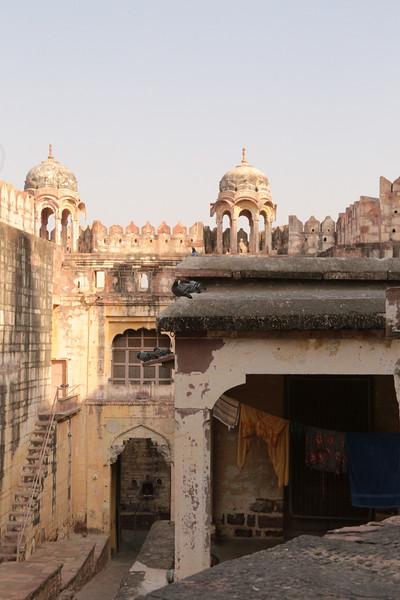 INDIA - 741.jpg