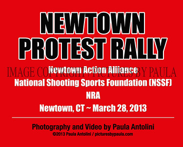 NEWTOWN PROTEST RALLY ~ Newtown Action Alliance ~ National Shooting Sports Foundation ~ Newtown, CT ~ March 28, 2013