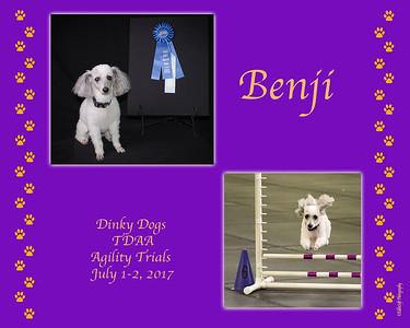 Dinky Dogs TDAA - July 1-2, 2017