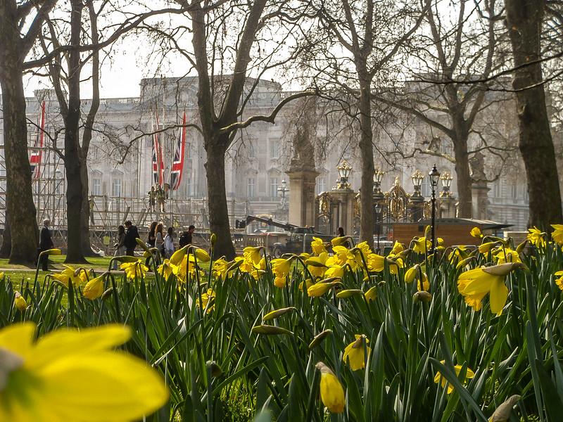 2.5 - Buckingham Palace - Seen from the gardens along the Queen's Way.jpg