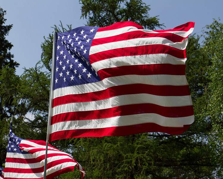 Flags-8.jpg