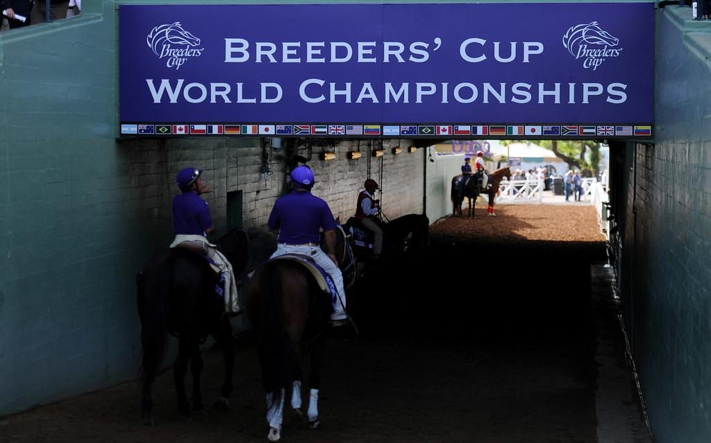 . The 2014 Breeders� Cup World Championships at Santa Anita Park in Arcadia, Calif., Friday, Oct. 31, 2014.  (Photo by Keith Birmingham/ Pasadena Star-News)