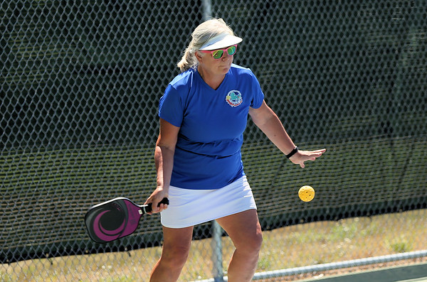 Learn to play pickleball - July 16, 2018