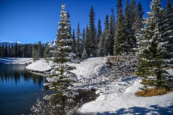 11-16-15 Forgetmenot Pond