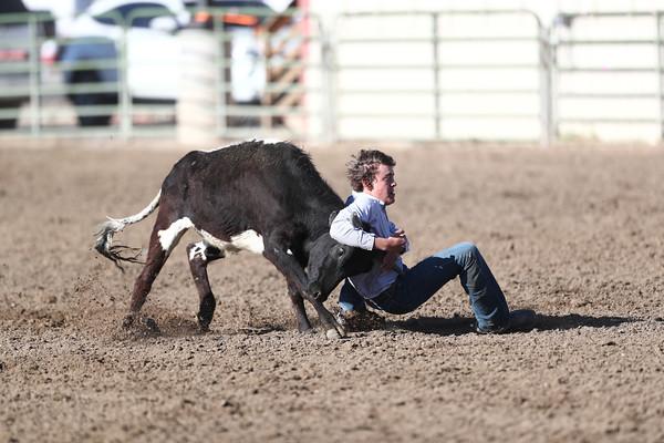 HS Steer Wrestling