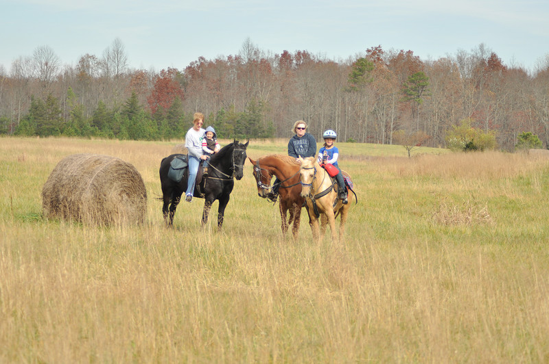 horse-riding-0143.jpg